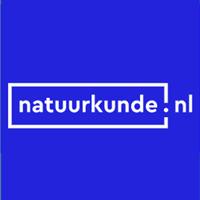 natuurkunde.nl